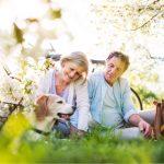 6 raças de cachorros para idosos